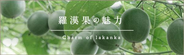 羅漢果の魅力 charm of lakanka